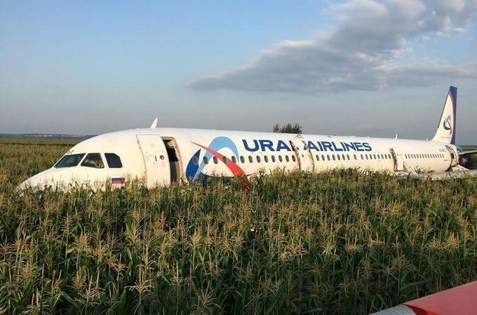 ¡Pánico! Un Airbus con 233 personas a bordo aterriza de panza en un campo de maíz en las afueras de Moscú