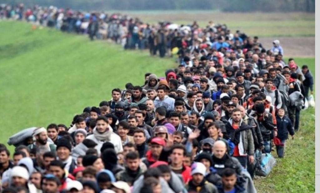 Capsulas de inmigración