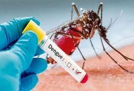 Dengue se eleva ; 14 niños ingresados en el Robert Reid Cabral